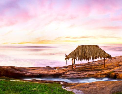 Laguna Beach Open Artist Studio